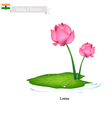 Water Lily The National Flower of India vector image vector image