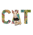 word cat with a drawing of a cat vector image