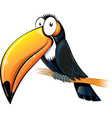 fun toucan cartoon isolated on white vector image