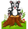 cartoon skunk posing on tree stump vector image vector image