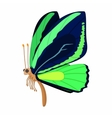 Dark blue-green butterfly icon cartoon style vector image vector image