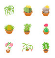 different flowers icons set cartoon style vector image vector image