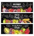 exotic fruit sketch banners eco market food vector image vector image