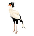 exotic heron icon cartoon style vector image