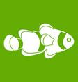 fish clown icon green vector image vector image