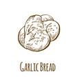 garlic bread hand drawn vector image