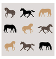 horses pattern vector image vector image
