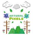 natural pixels cartoons vector image