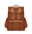 brown leather backpack vector image