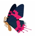 Dark blue-pink butterfly icon cartoon style vector image vector image