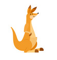 kangaroo cute wallaby vector image