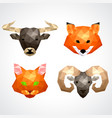 low poly animals bull fox cat ram set vector image