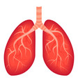 lungs icon cartoon style vector image