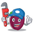 plumber plum mascot cartoon style vector image