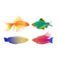 rare varicolored sea creature cartoon vector image