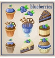 Set of sweets with blueberries vector image vector image
