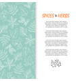 spice and herbs banner - hand sketched culinary vector image