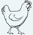 Figure chicken vector image
