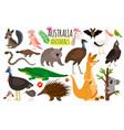 australian animals animal icons of vector image vector image