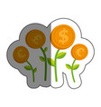 plants with coins isolated icon vector image