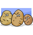potatoes vegetable cartoon vector image vector image