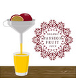 the theme passion fruit vector image vector image