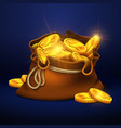 cartoon big old bag with gold coins cash prize vector image vector image