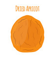 dried apricot in cartoon style vegetarian snack vector image vector image