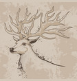 sketch a deer head with antlers vector image