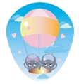 Spiders in a Balloon vector image vector image