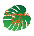 summer sale design image vector image vector image