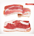 bacon fresh meat 3d realistic icon set vector image vector image