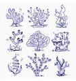 ballpoint pen drawing seaweeds corals underwater vector image vector image