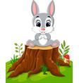 cartoon easter bunny on tree stump vector image vector image