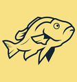 Fish Line Art vector image