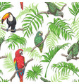 parrots toucan and palm leaves pattern vector image vector image