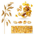 realistic muesli cereal set vector image vector image