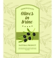 Retro label for olives in brine with branch of vector image vector image