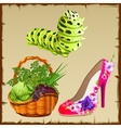 Symbols of summer shoe vegetables and centipede vector image vector image