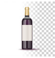 vine bottle vector image