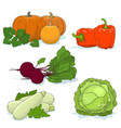 gardening vegetables isolated on white vector image vector image
