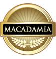 macadamia gold label vector image vector image