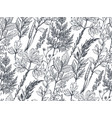 seamless pattern with hand drawn herbs and