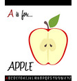 cartoon of capital letter a with apple for vector image