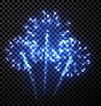 Festive blue firework background vector image