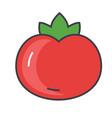tomato concept line icon editable stroke vector image