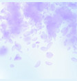 violet flower petals falling down classic romanti vector image