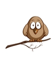 Funny Sparrow On White vector image
