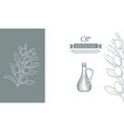 olive branches and bottle banner template and vector image vector image