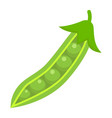 peas flat icon vegetable and diet vector image